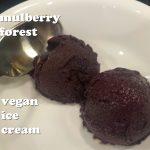 mulberry forest vegan ice cream